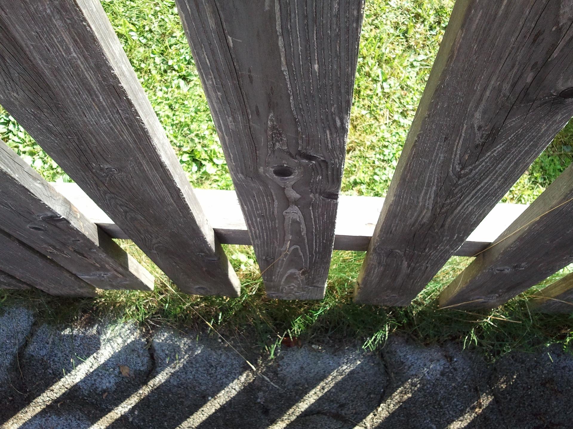 Jak zabezpieczyć drewno na posesji i w ogrodzie, żeby służyło nam długie lata?