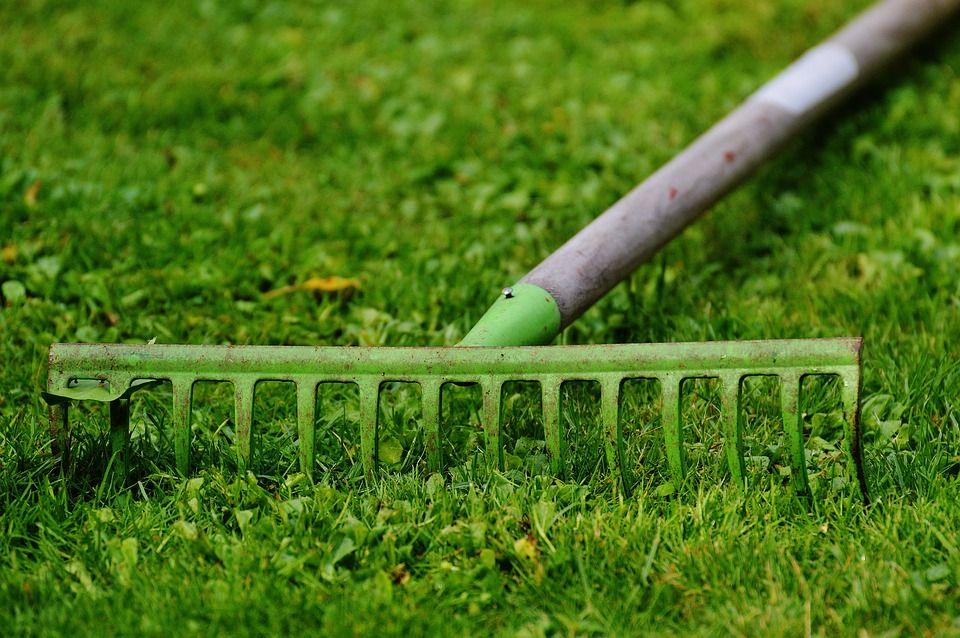 Najlepsze urządzenia przydatne przy wiosennych porządkach
