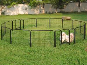 Ogród – bezpieczne miejsca dla zwierząt